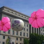 2012年4月桜祭りパレード